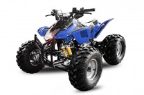 QUAD ATV 125ccm GRIZZLY OFFROAD Kinderquad BLAU
