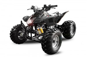 QUAD ATV 125ccm GRIZZLY OFFROAD Kinderquad SCHWARZ
