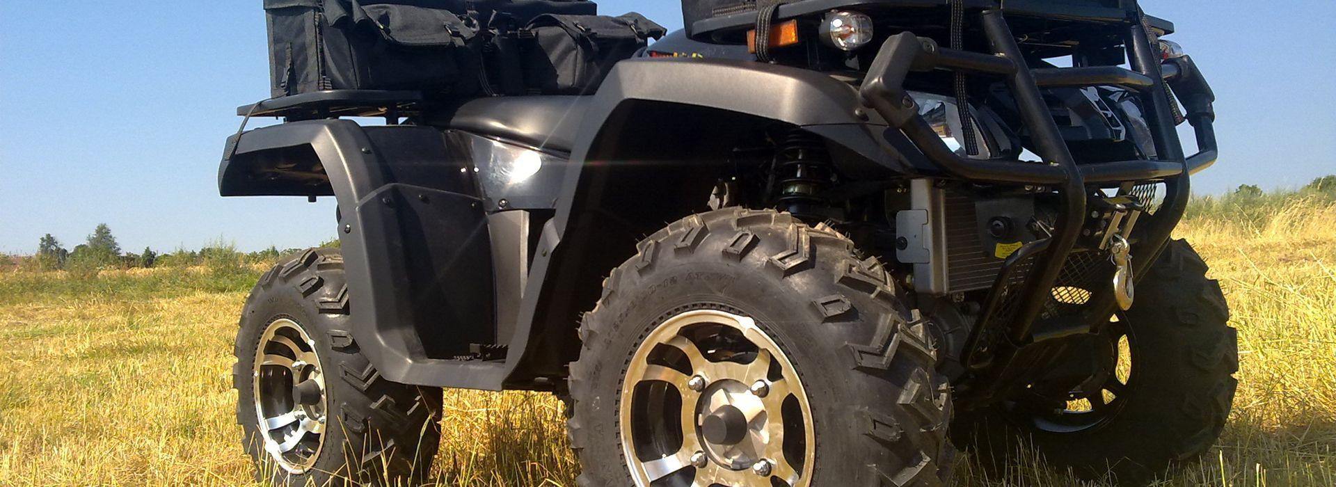 Predator 300ccm 4x4