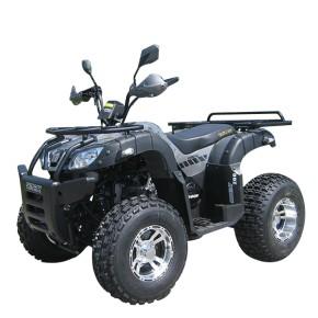 QUAD ATV SHINERAY XY200ST-6A Automatik 200ccm GRAU
